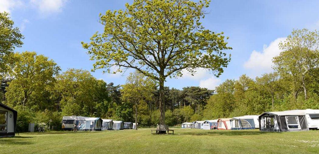 Camping 't Woutershok – Texel